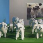 Tanger, installation, 13 moutons en plâtre, peinture à l'huile sur toile, 120/180, exposition à la Fondation Ecureuil pour l'art contemporain, Toulouse 2011