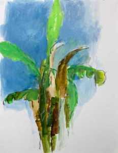 Bananiers- huile sur papier 32 x 42